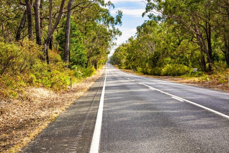 Landsväg i Victoria Australia royaltyfri bild
