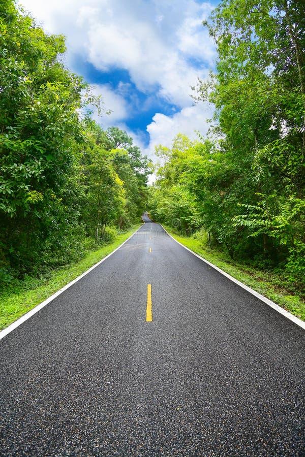 Landsväg mellan området till staden med rörelsesuddighet, resaväg av handelsresanden till naturen, väg i berget royaltyfri foto