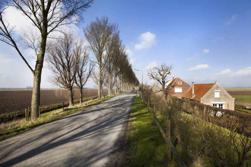 Landsväg på ett dike i holländskt polderlandskap arkivfoton