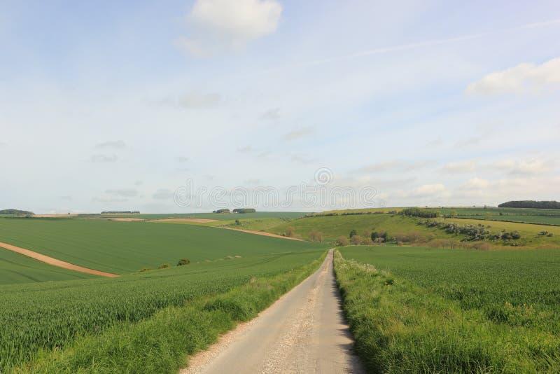 Landsväg till och med ett patchworklandskap av fält och häckar i vår arkivbild