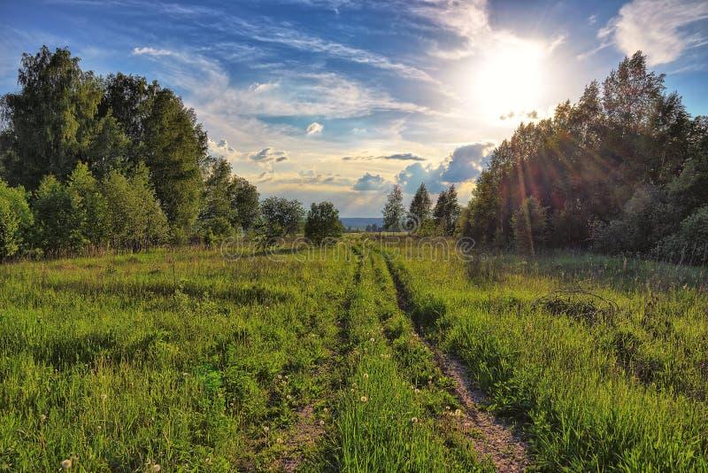 Landsväg till och med fälten på solnedgången arkivfoto