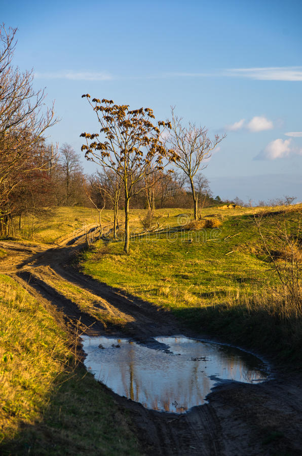 Landweg bij zonnige de herfstdag, Deliblatska-pescara royalty-vrije stock foto's