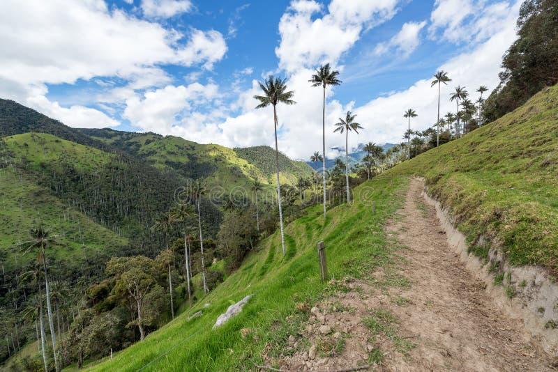 Landweg in Colombia royalty-vrije stock afbeeldingen