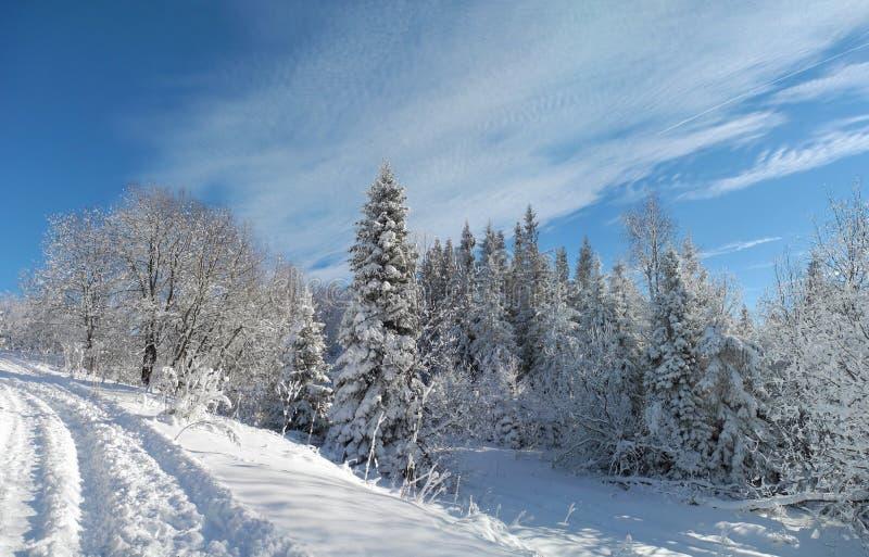 Landweg in de bergen met verse sneeuw worden behandeld die Mooi royalty-vrije stock afbeeldingen
