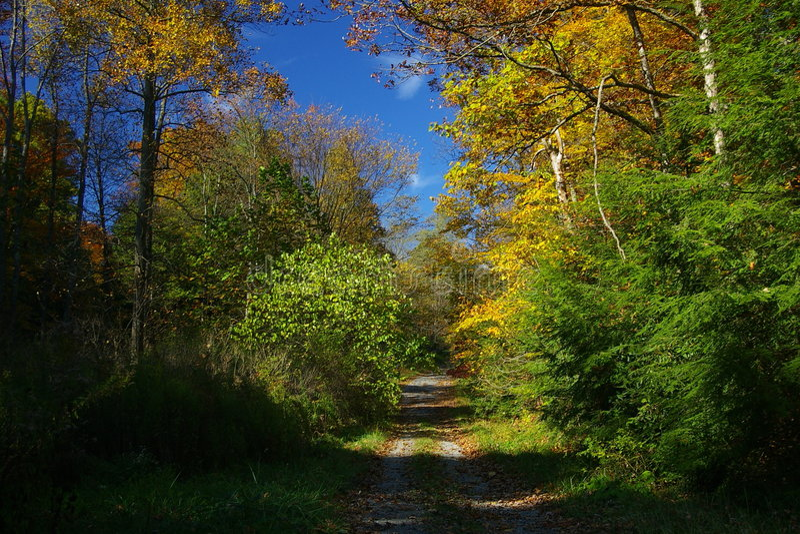 Landweg in de herfst royalty-vrije stock afbeeldingen
