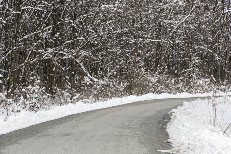 Landweg in de de wintertijd royalty-vrije stock fotografie