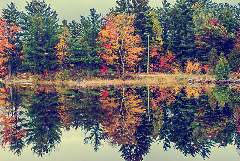 Landweg die door een Meer in de Herfst lopen - Wijnoogst royalty-vrije stock afbeelding
