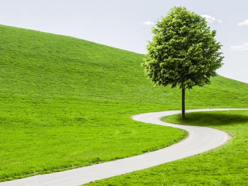 Landweg die door groen landschap winden royalty-vrije stock foto
