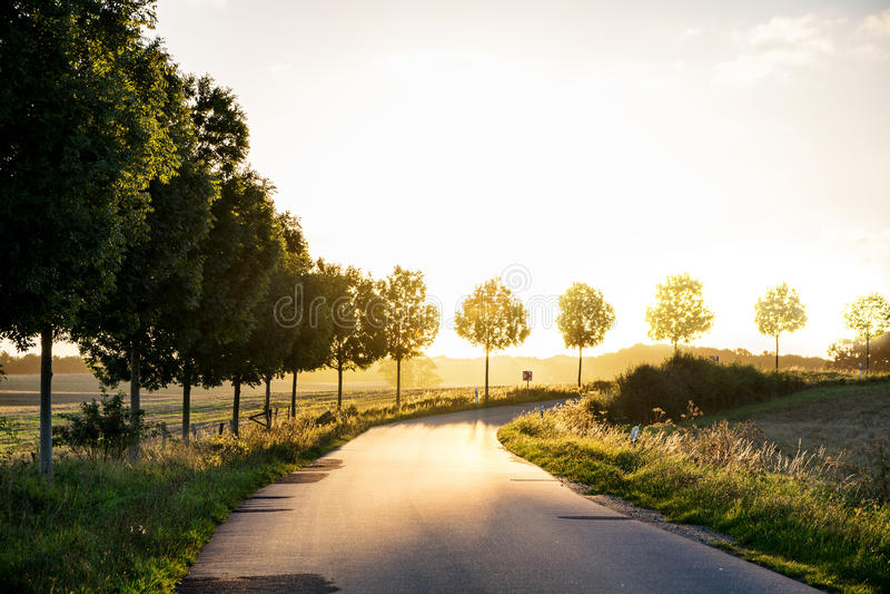 Landweg die tot het herfstzonsonderganglicht leiden, concept van stock afbeeldingen