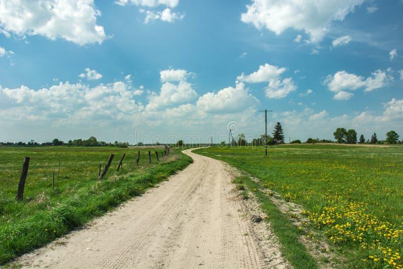 Landweg door groene weilanden, houten posten in de omheining en gele bloemen in het gras royalty-vrije stock fotografie