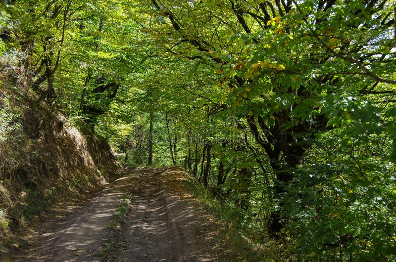 Landweg door het Nationale Park van Dilijan stock fotografie