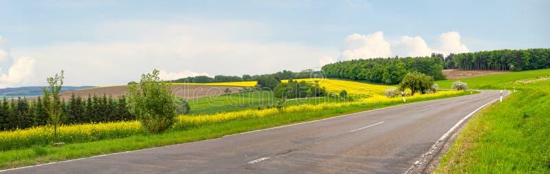 Landweg door heuvelig landschap en bloeiende verkrachtingsgebieden royalty-vrije stock afbeelding