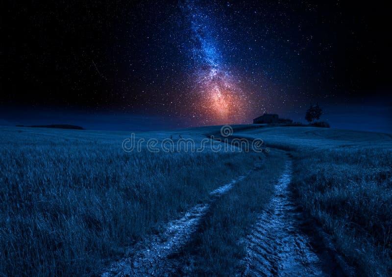 Landweg en groen gebied bij nacht met sterren, Toscanië royalty-vrije stock afbeeldingen