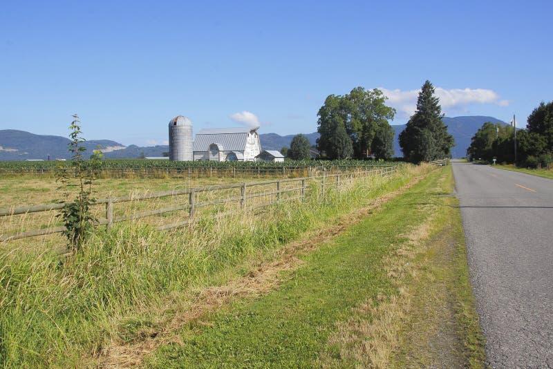 Landweg en Landbouwbedrijf stock afbeeldingen