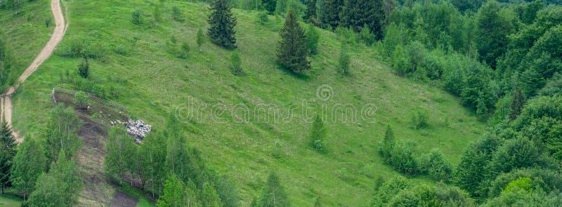 Landweg en sheepcote, panorama royalty-vrije stock afbeeldingen