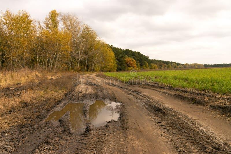 Landweg na Regen royalty-vrije stock afbeelding
