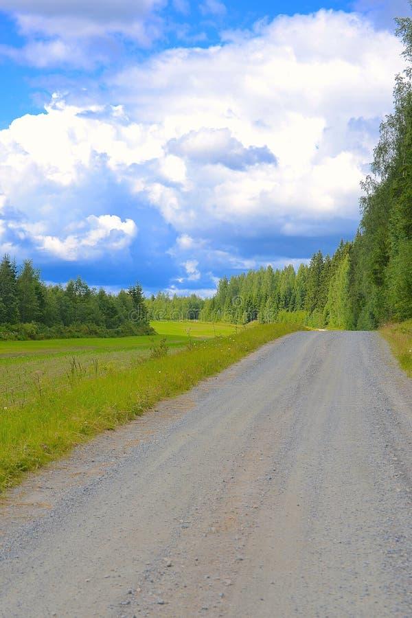 Landweg naast weide royalty-vrije stock fotografie
