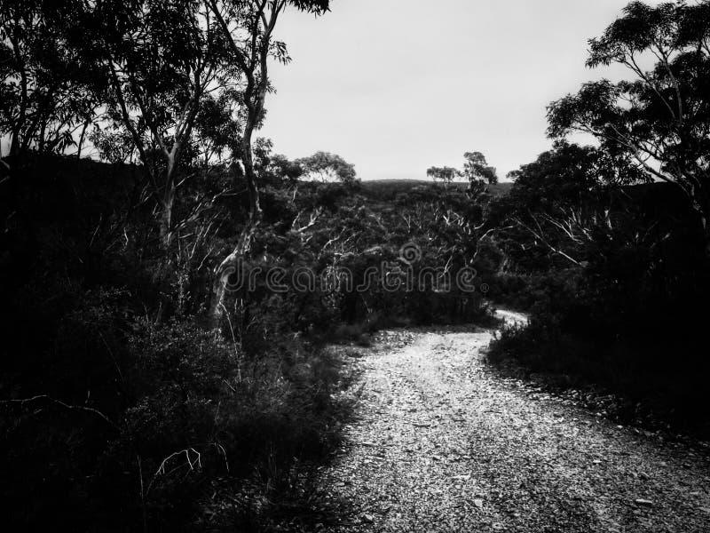 Landweg op berg in Australië stock foto's