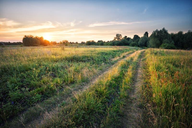 Landweg op gebied met dicht gras bij zonsondergang stock fotografie