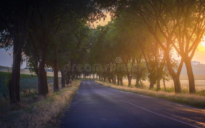 Landweg op zonsondergangtijd royalty-vrije stock fotografie