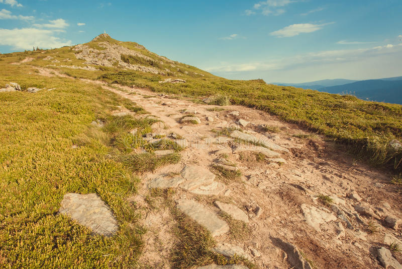 Landweg tot de bovenkant van groene berg Aardlandschap met landelijke manier in gras Mooi landschap in de Karpaten royalty-vrije stock foto's