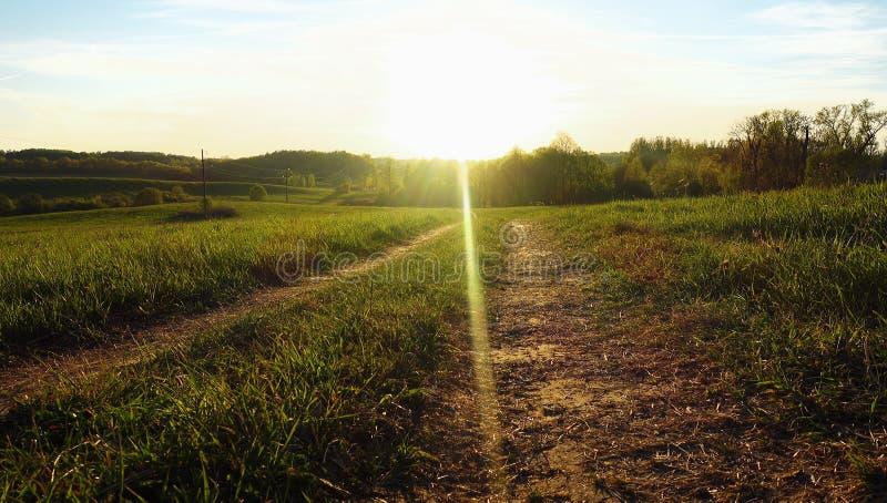 Landweg in zonlicht stock afbeelding