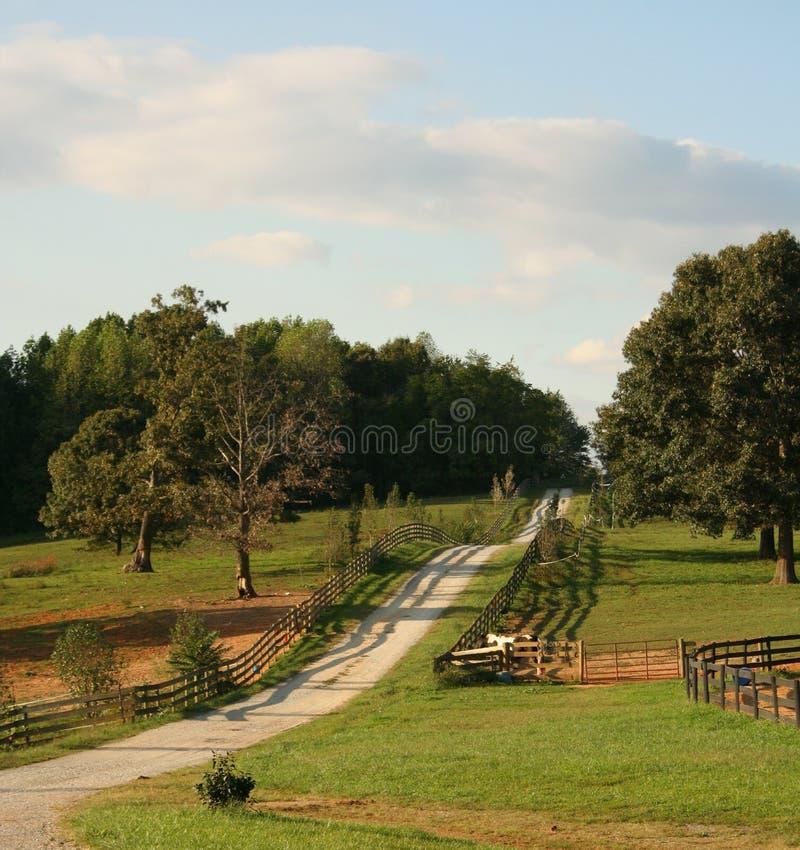 Landweggen van Virginia de V.S.   stock foto
