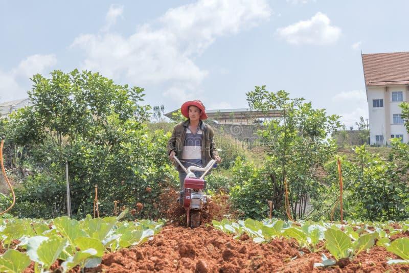 Landwirt auf Feld stockfotos