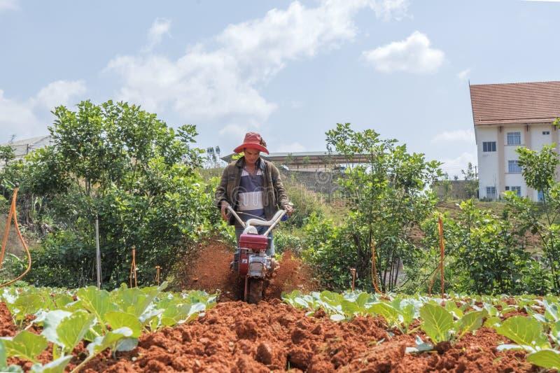 Landwirt auf Feld stockbild