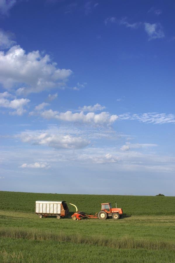 Landwirt-Ausschnitt-Heu lizenzfreie stockbilder