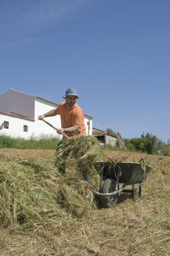 Landwirt, der an dem Bauernhof arbeitet lizenzfreie stockbilder