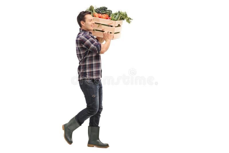 Landwirt, der eine Kiste mit Gemüse trägt stockfotografie