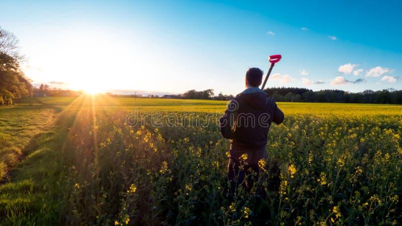 Landwirt, der Rapssamen-Blumen-Feld betrachtet lizenzfreies stockbild