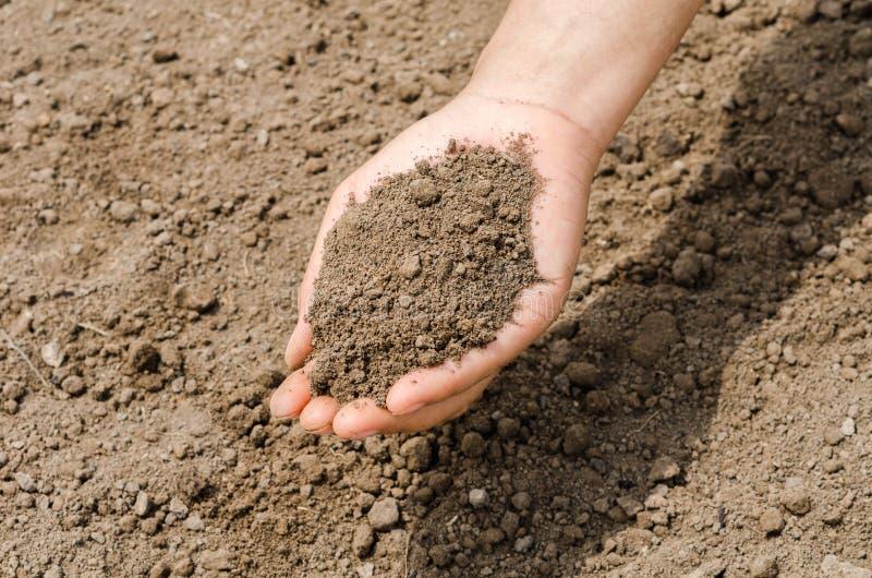 Landwirt, der Stapel des weiblichen Agronomen der Bodenkrume überprüft q hält stockbild