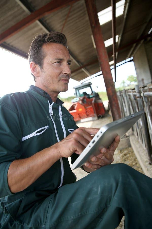 Landwirt, der Tablette in der Scheune verwendet lizenzfreie stockfotografie