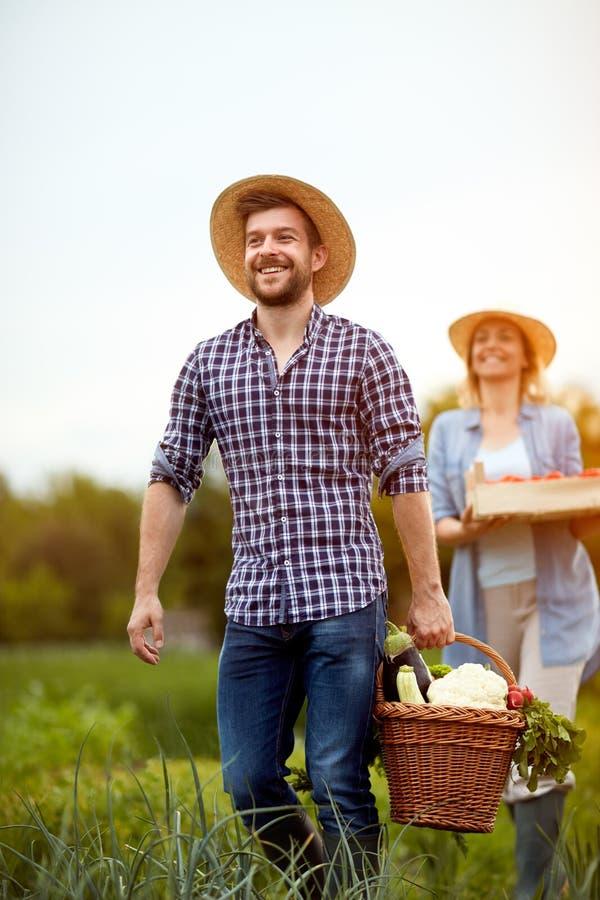 Landwirt, der vom Garten mit vegetarischen Produkten zurückkommt stockbild