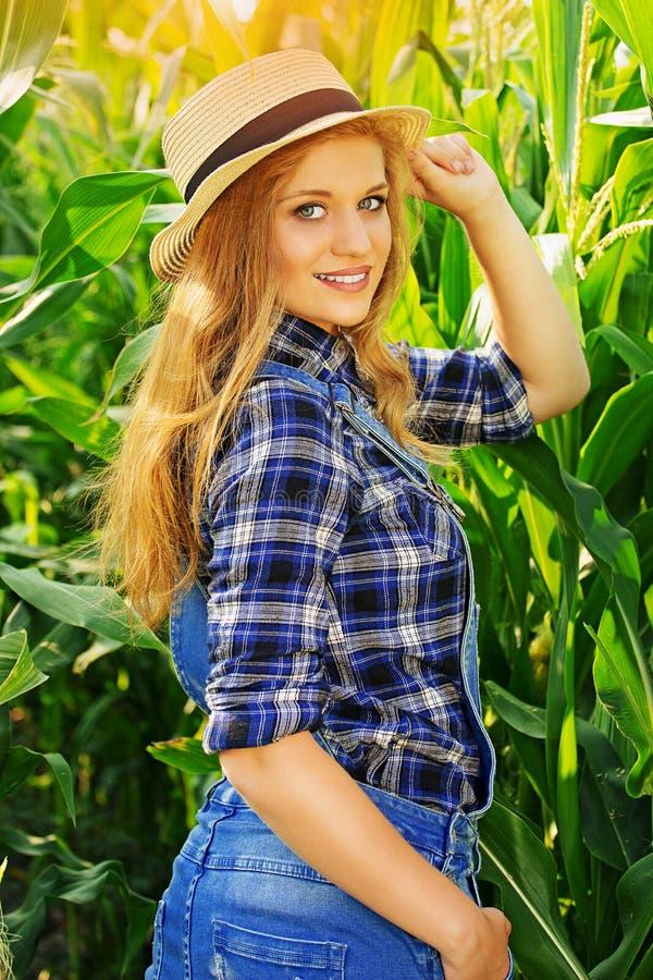 Landwirt Die Ernte auf dem Gebiet stockfotografie