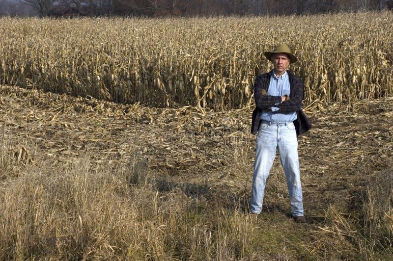 Landwirt im Getreidefeld lizenzfreies stockbild