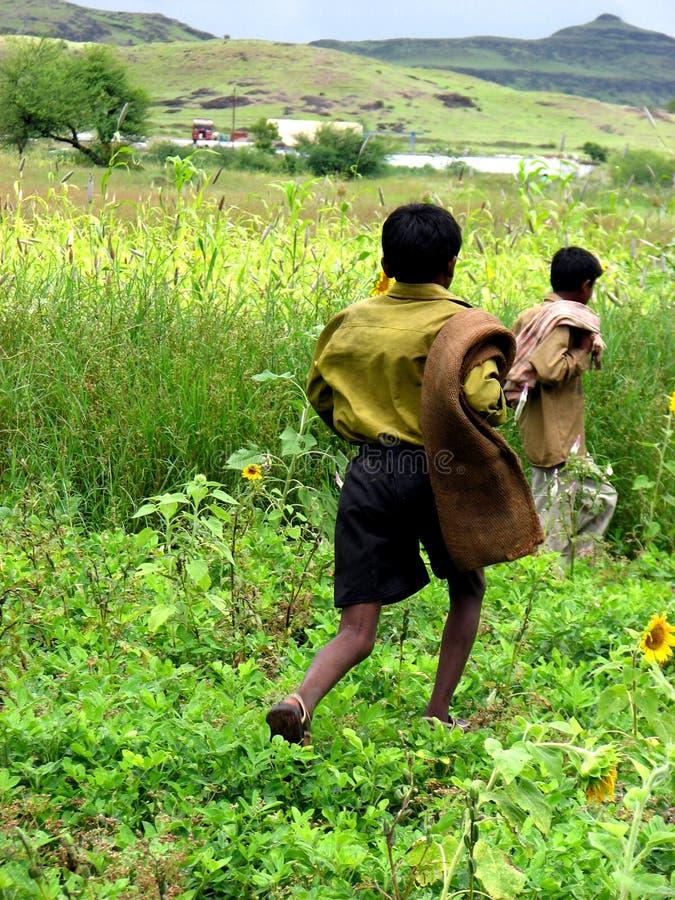 Landwirt-Jungen lizenzfreie stockbilder