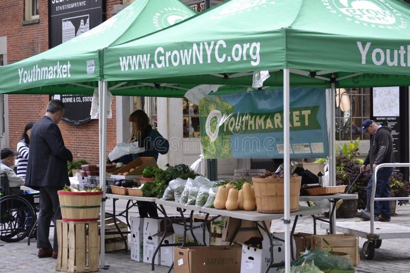 Landwirt-Markt NYC Youthmarket stockbilder