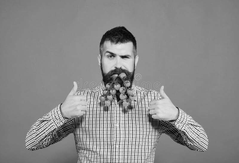 Landwirt mit überzeugtem Gesicht hält Bündel rote Kirschtomaten lizenzfreies stockfoto