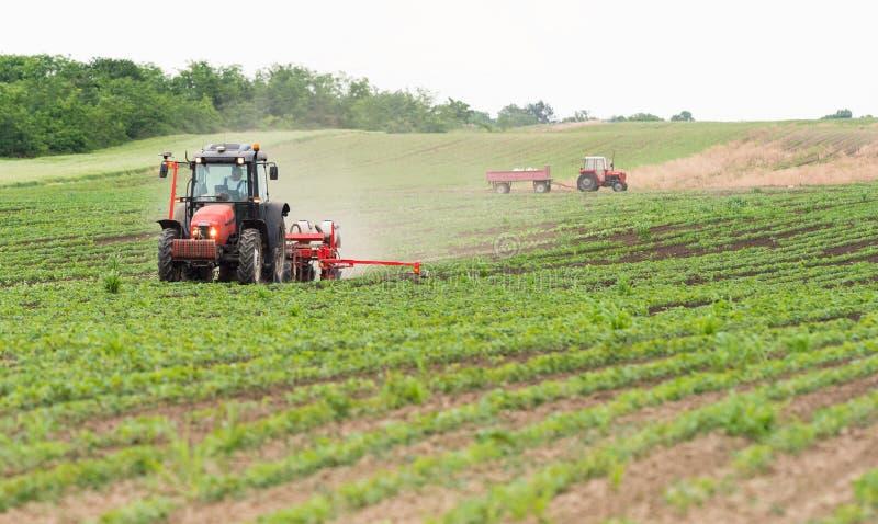 Landwirt mit dem Traktor, der Sojabohnenölernten am landwirtschaftlichen Feld sät stockfotografie