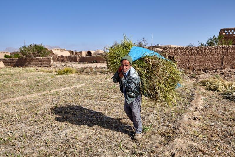 Landwirt trägt Heubündel von den Feldern nahe Saryazd-Festung, IRA lizenzfreies stockfoto