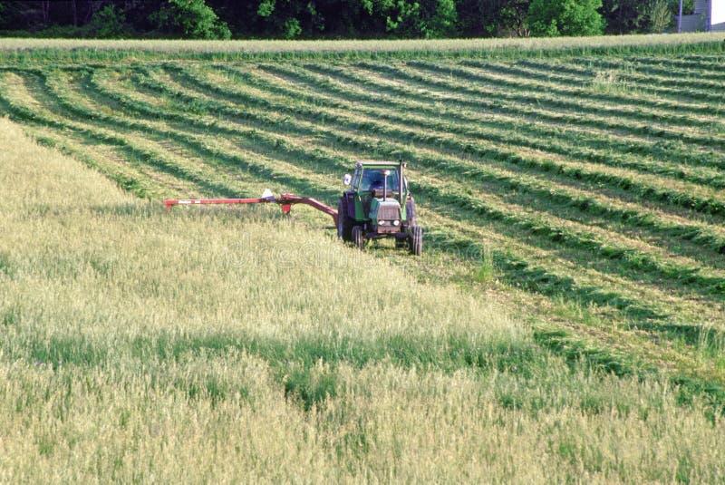Landwirtausschnittfeld lizenzfreies stockbild