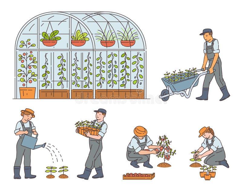 Landwirte, die ökologisch saubere Lebensmittel anbauen, isolierte Vektorskizzen lizenzfreie abbildung
