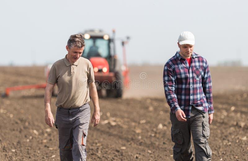Landwirte, die gepflanzte Weizenfelder examing sind lizenzfreie stockfotografie