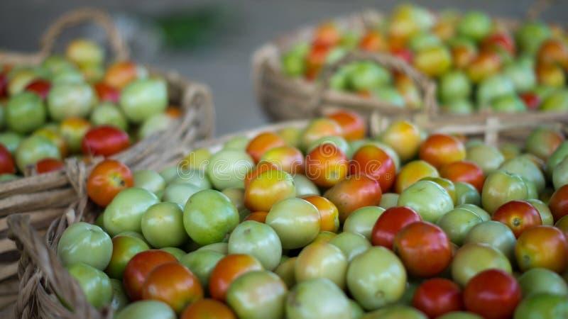 Landwirte vermarkten frische Tomaten stockfotos