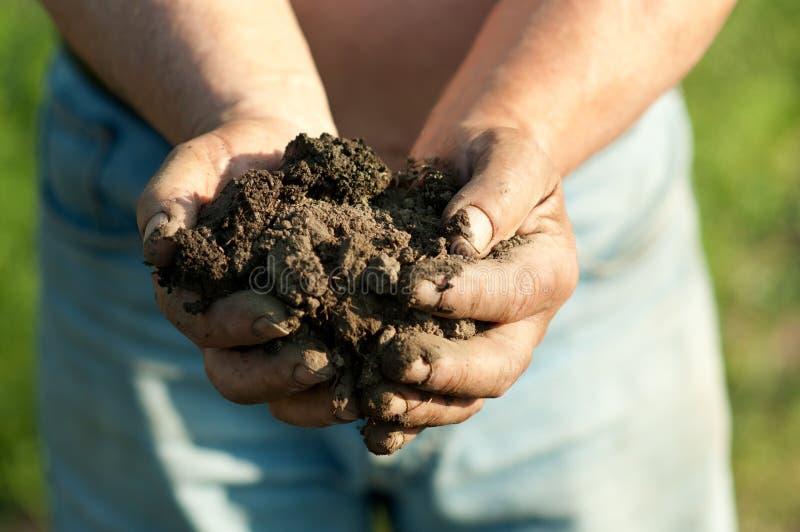 Landwirtholdingklumpen des nassen Bodens in seinen Händen stockbilder