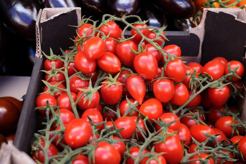Landwirtmarktzähler mit frischen organischen Tomaten, Aubergine und Gemüsepaprika, Gemüsenahaufnahme, Haufen von gesunden Vitamin lizenzfreies stockbild