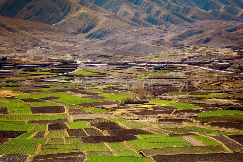 Landwirtschaft Maghreb stockbilder
